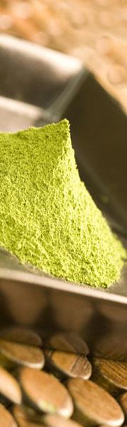 Japanse groene thee matcha