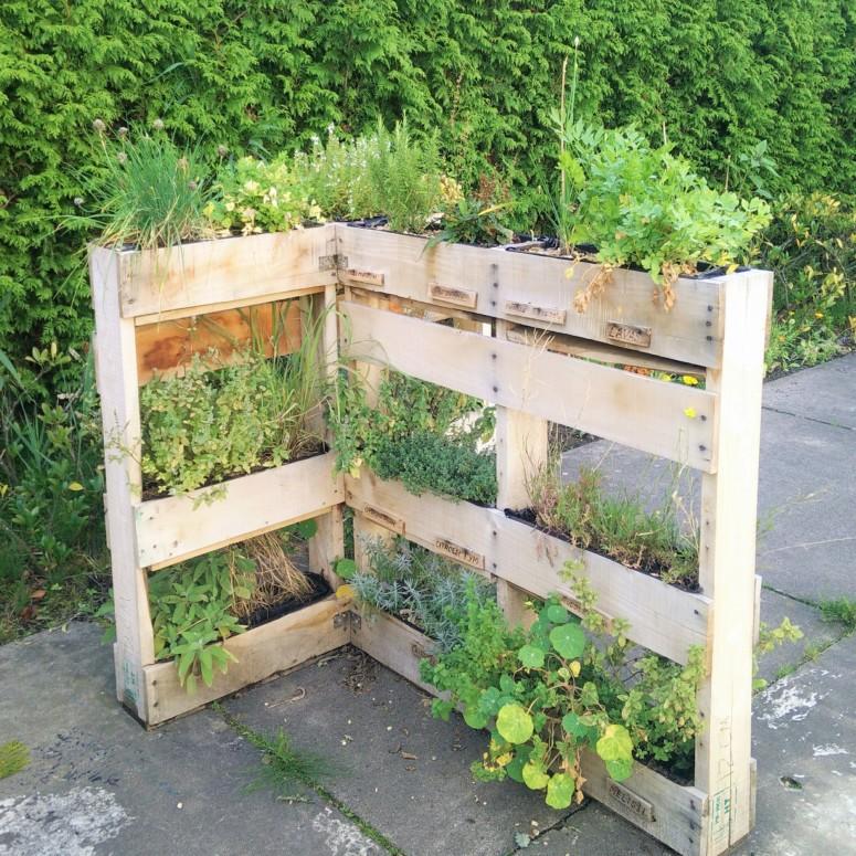 Tips voor eigen oogst : ecologisch tuinieren smaakt zoveel beter!