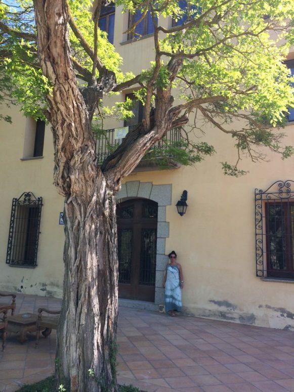 Hotspot tips biologisch hotel barcelona