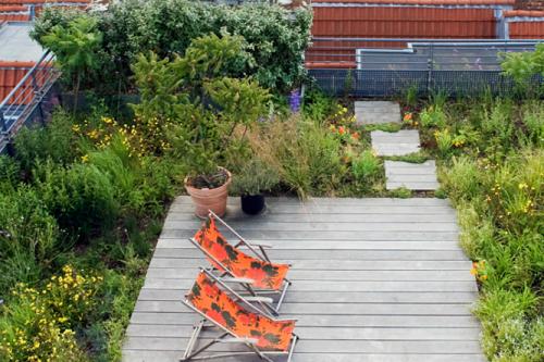 begroeid dak boven op bedrijfsgebouw niet alleen een ontspannende plaats voor medewerkers, maar ook goed voor de biodiversiteit.