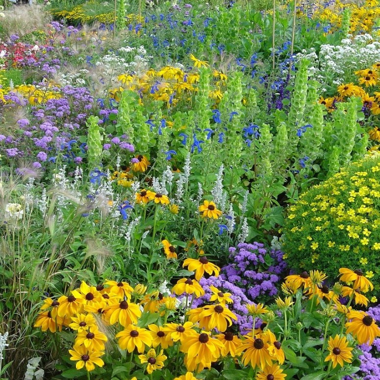 Pflanzen Sie lokale Blumen und Pflanzen auf Ihrem Firmengelände für die Biodiversität.